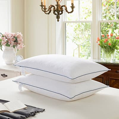 Top 10 Best Down Pillows In 2019 Reviews Closeup Check