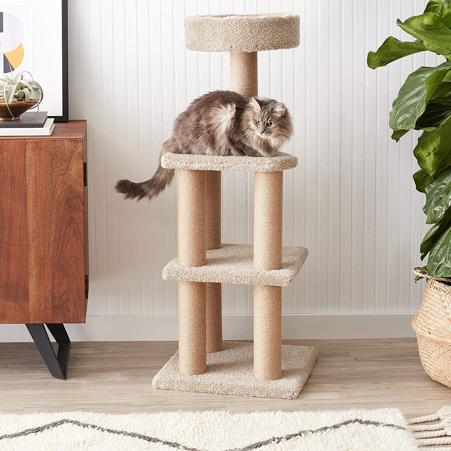 7. AmazonBasics Cat Activity Tree with Scratching Posts