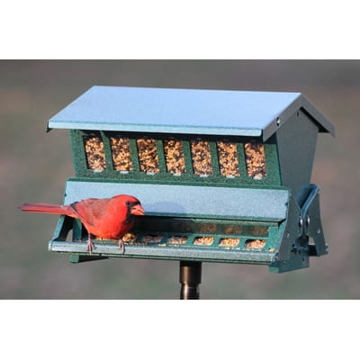 6. Woodlink Absolute II Squirrel Resistant Bird Feeder