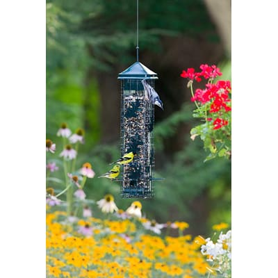 3. Brome Squirrel Solution200 Squirrel-proof Bird Feeder with 6 Feeding Ports