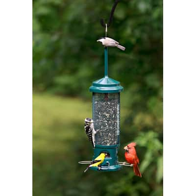 4. Brome Squirrel Buster Legacy Squirrel-proof Bird Feeder with 4 Metal Perches